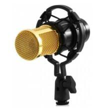 LEIHAO BM-800 professzionális mikrofon kerettel (CN) - Fekete