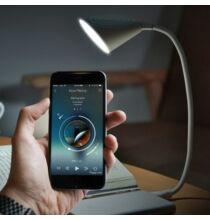 L2 USB jszakai Asztali lámpa