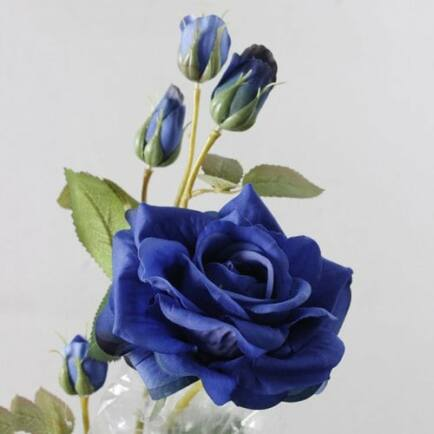 Aranyozott Rózsa - Sötétkék (2db.)